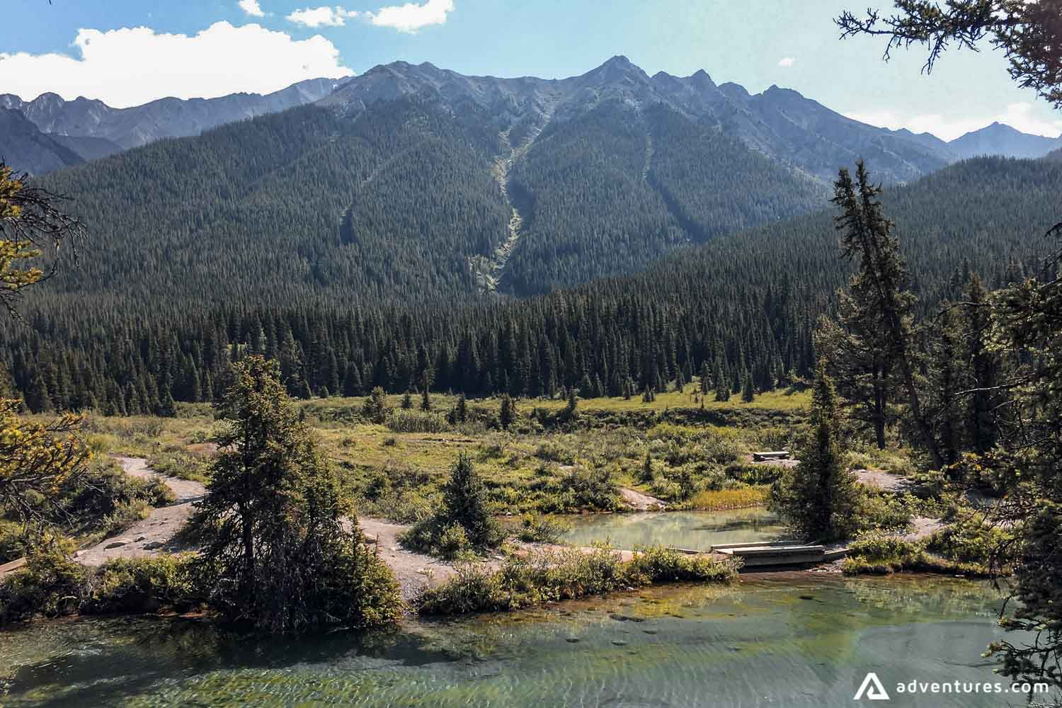 Beautiful nature in Canmore