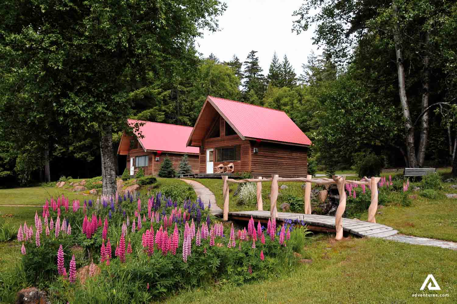 Summer vacation lodges with bridge and flowers around