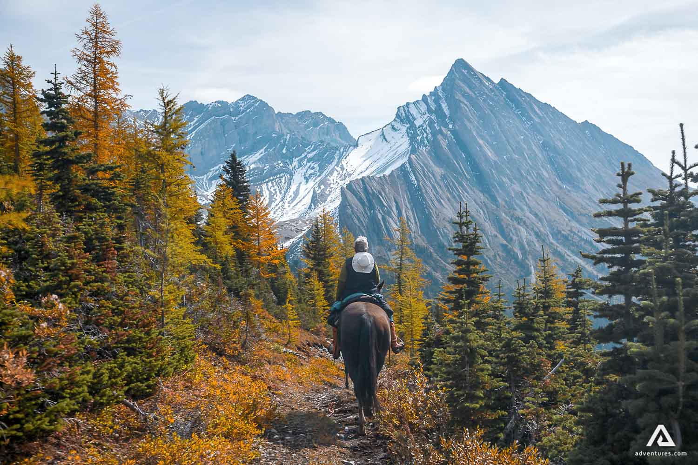 Horseback riding on the trail