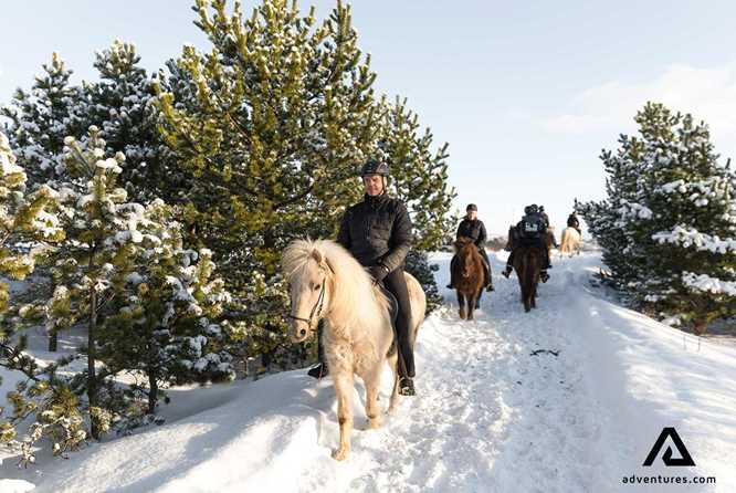 horse riding winter
