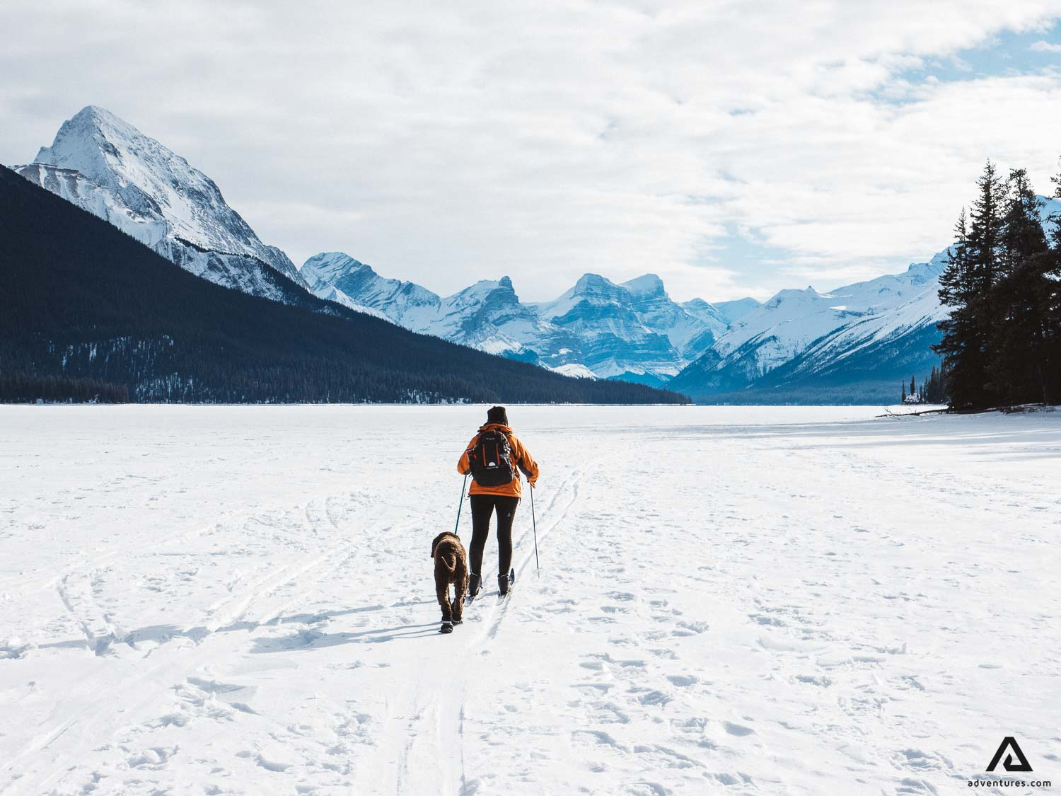 Winter Hiking with a pet