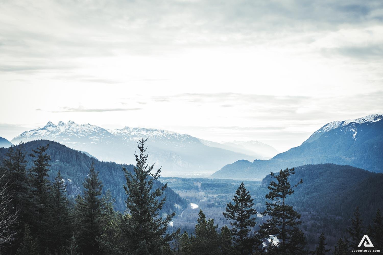 Woods in British Columbia