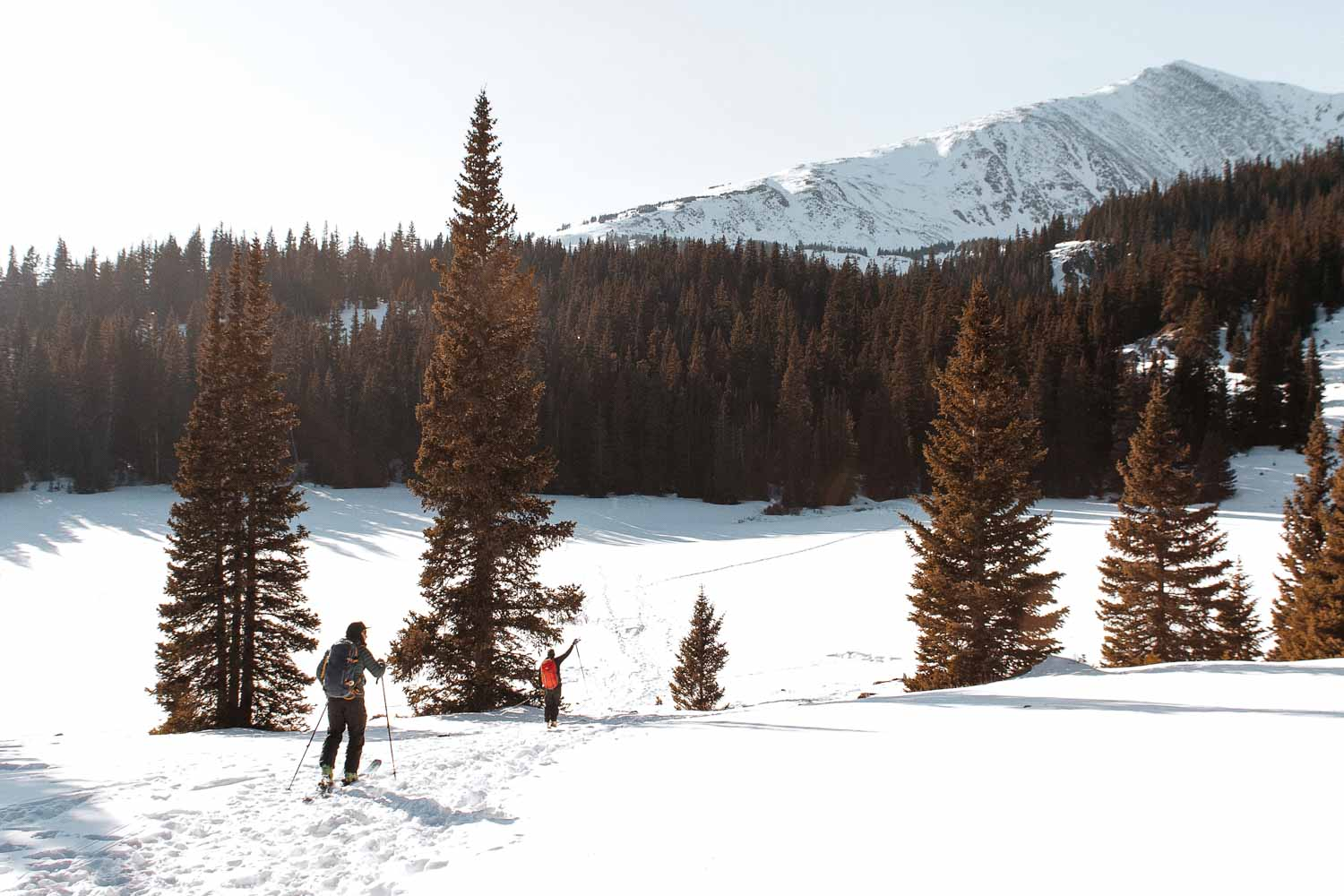 Cross-Country Skiing in Canada