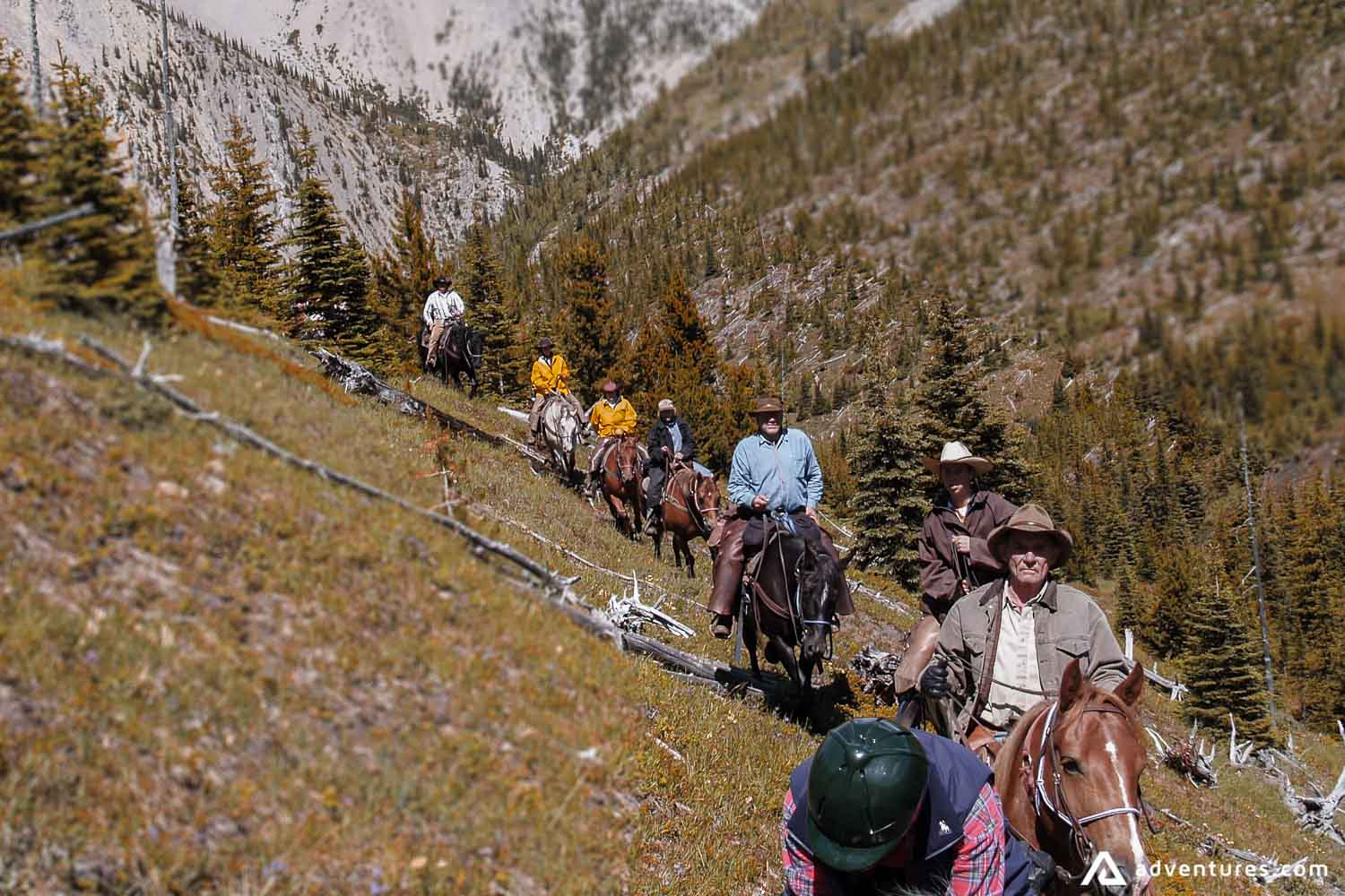 Group of People Ride Horses on a mountains