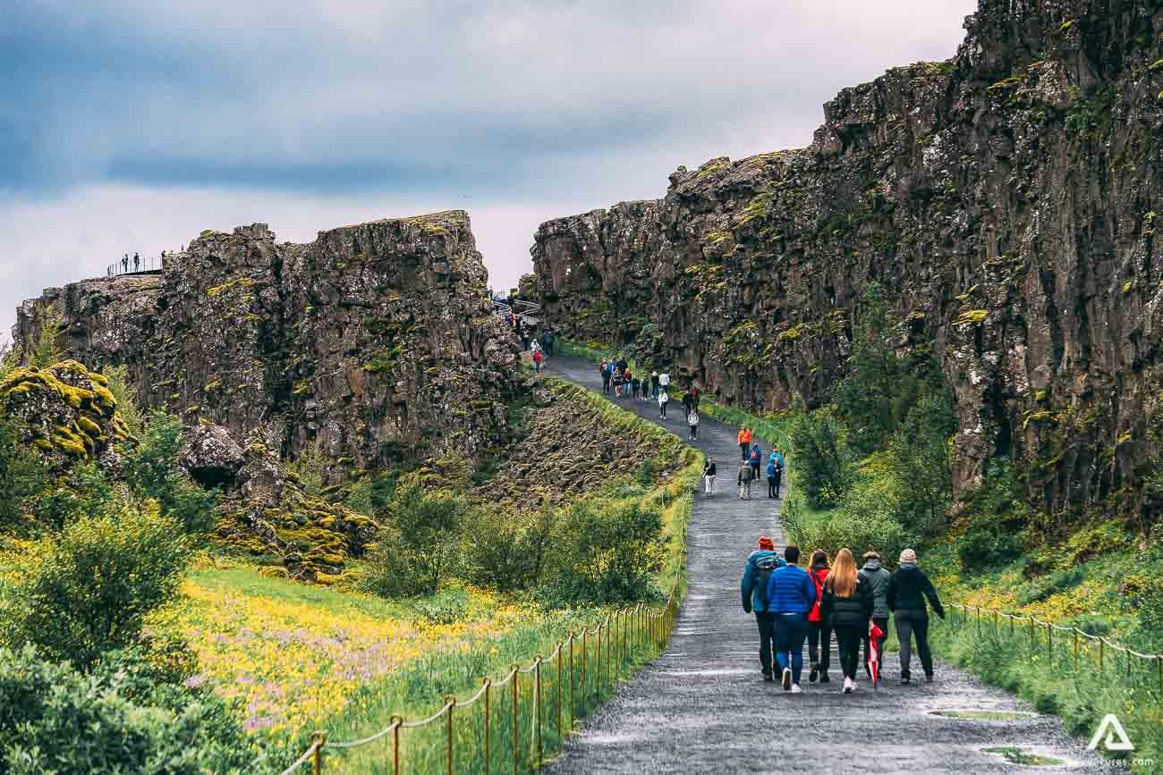 Green Thingvellir national park