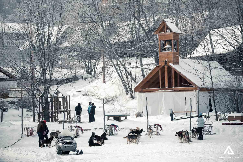 Sledding winter activity in Canada