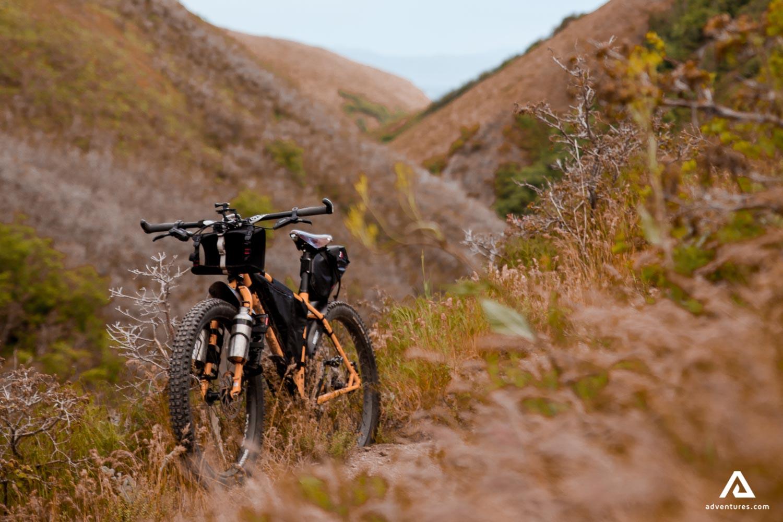 Cyclist Mountain Biking