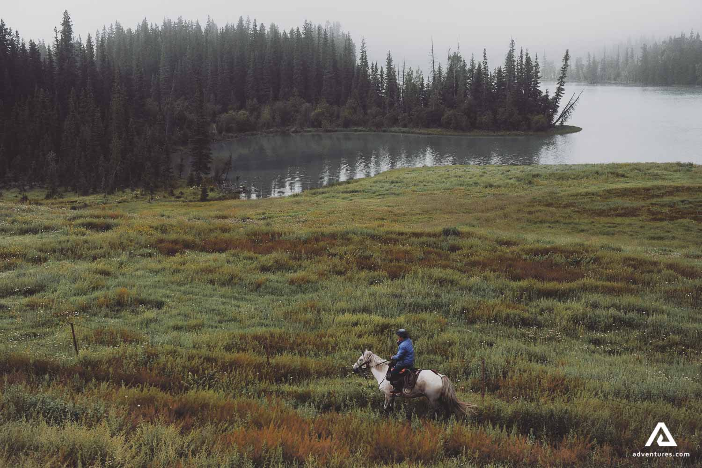 Horse Rider in nature
