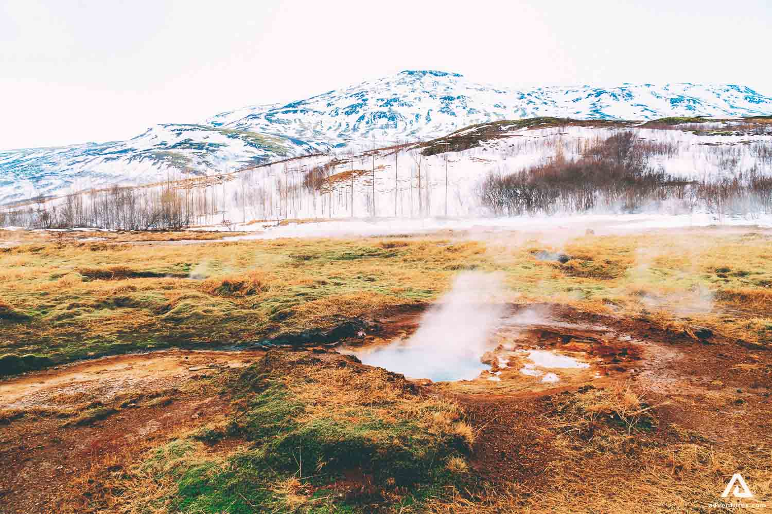 Geysir with mountain view
