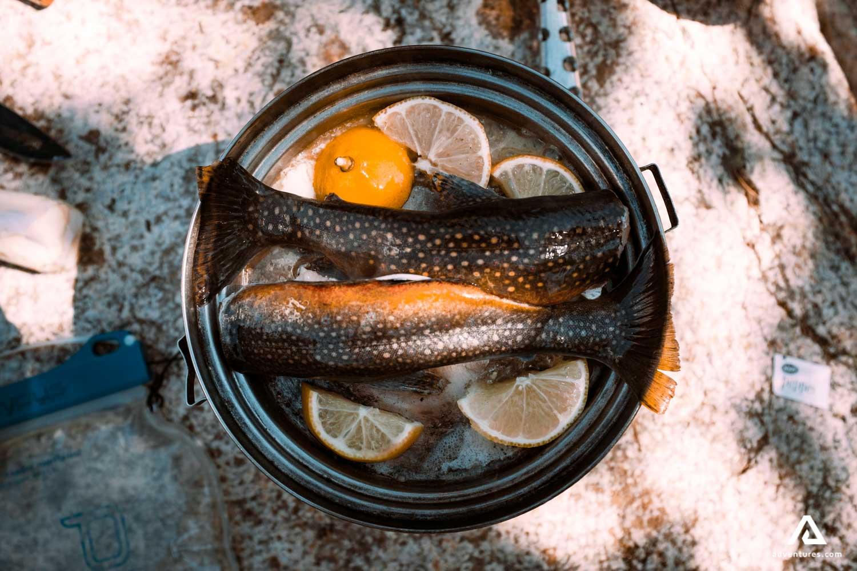 Fish Preparing in Wilderness